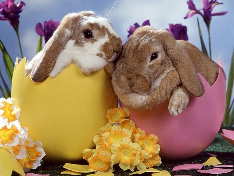Easter cuddles